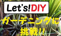 ガーデニング初心者必見!おしゃれな庭作りDIYで緑のある毎日を♪